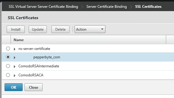 HowTo: Importing SSL Certificates on the NetScaler | virtuEs.IT